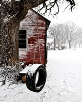 Tire Swing in Winter